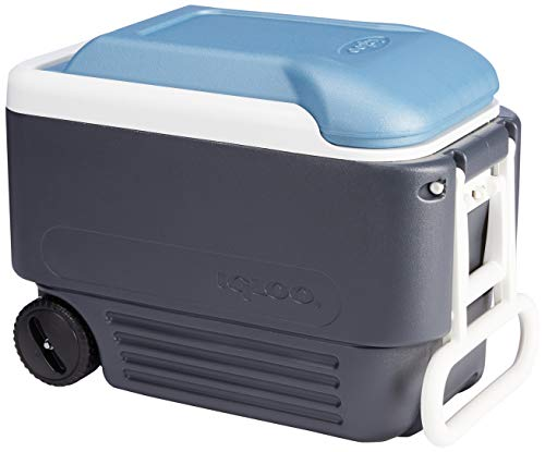 IGLOO Maxcold Nevera, Outdoor, Azul, 95 litros
